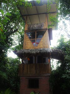 The Bird Tower, Nature lovers dream! - Mindo - บ้านต้นไม้