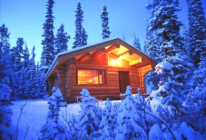 Basecamp Cabin - Evergreen