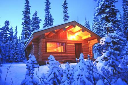 Basecamp Cabin - Evergreen - Cabin