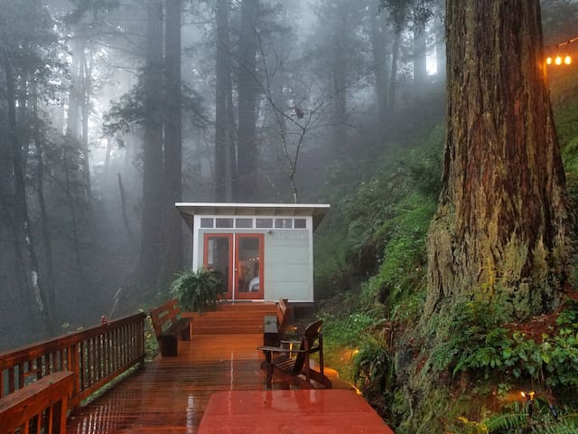 Romantic studio in the California redwoods. - Woodside - Kabin