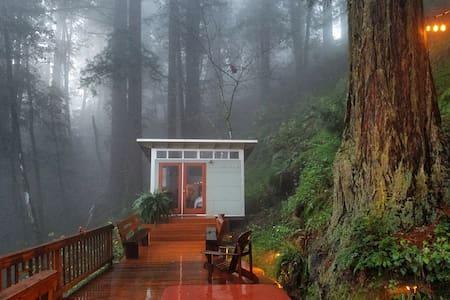 Romantic studio in the California redwoods.