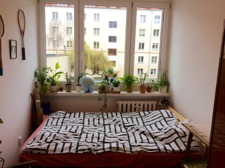 Cozy and sunny room 2mins walk from Stary Browar