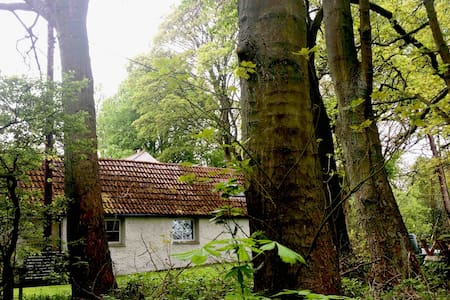 Fairbeck Lodge   (an idyllic woodland retreat)