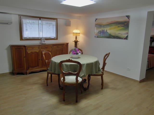 Bright graceful indipendent flat - Pisa - Wohnung