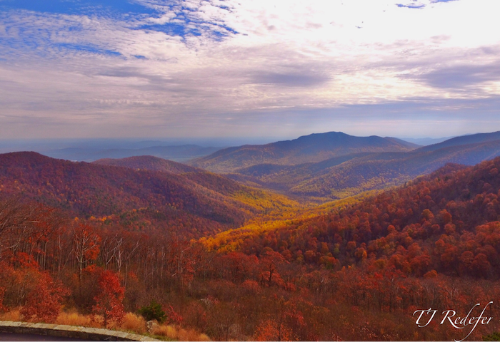 Just 15 minutes to all the beauty that the Shenandoah has to offer!