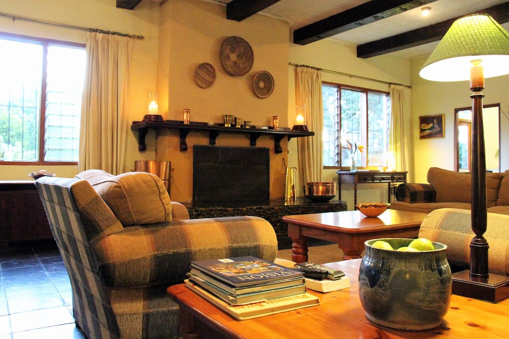 Lounge with library, fireplace and DSTV