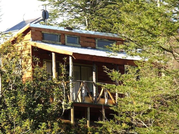 Refugio de Montaña Kultrun Mawida, Cabaña