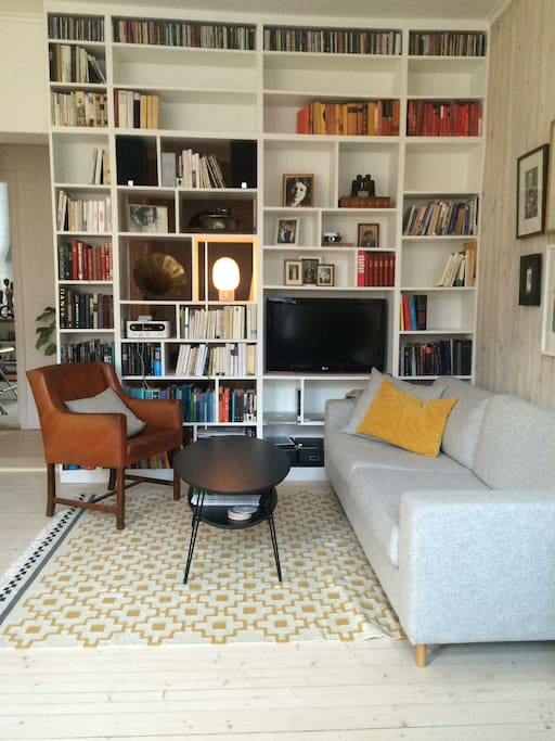 A luminous livingroom with a nice library-