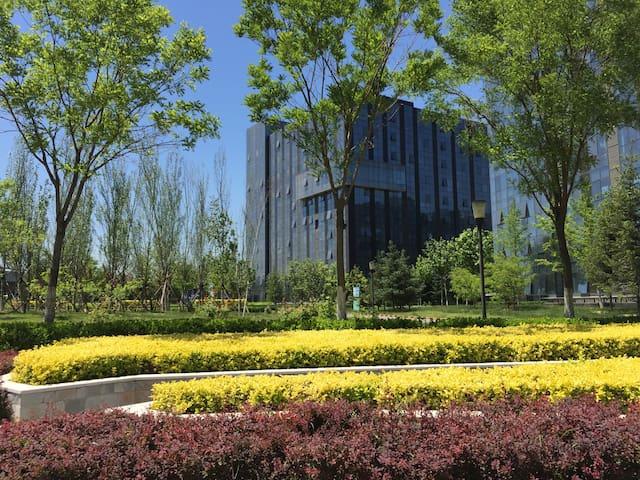 首都机场接转机住宿/新国展展会住宿温馨大床房 - Peking - Wohnung