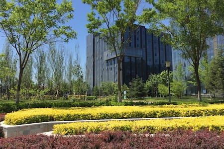 首都机场接转机住宿/新国展展会住宿温馨大床房 - 北京 - アパート