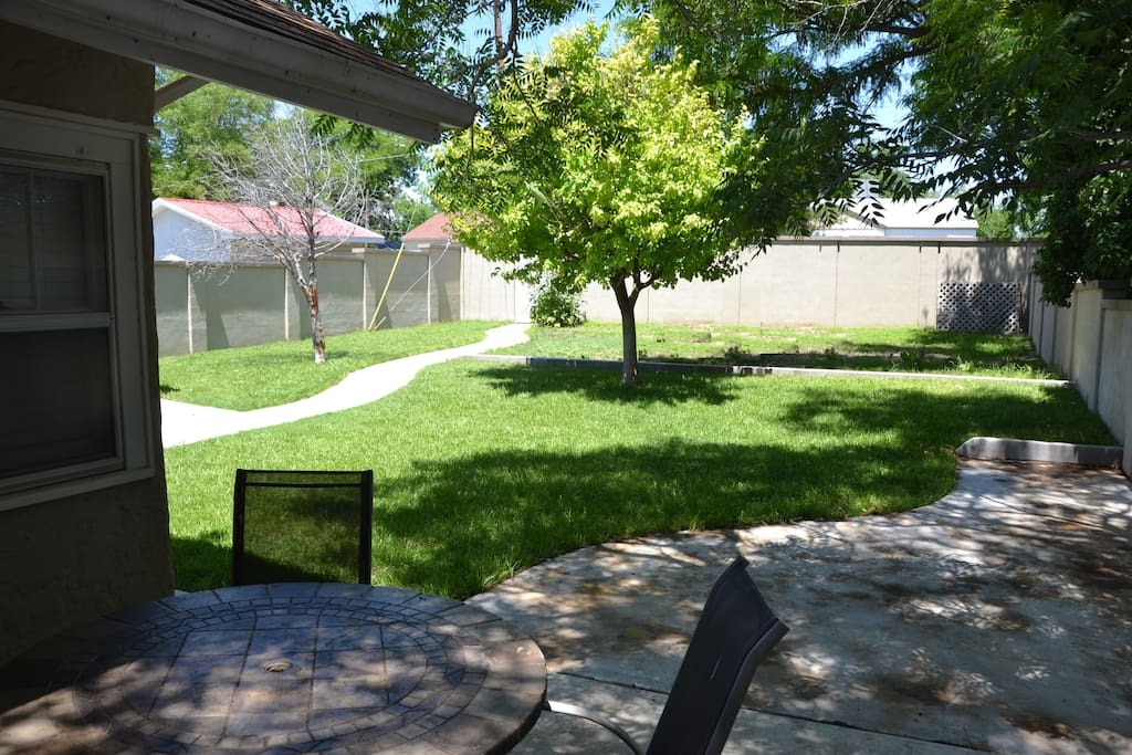 Back yard/patio