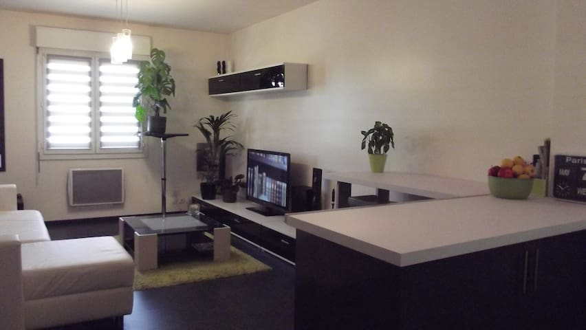 A 20 minutes de Disney et 25 minutes de Paris - Gretz-Armainvilliers - Appartement