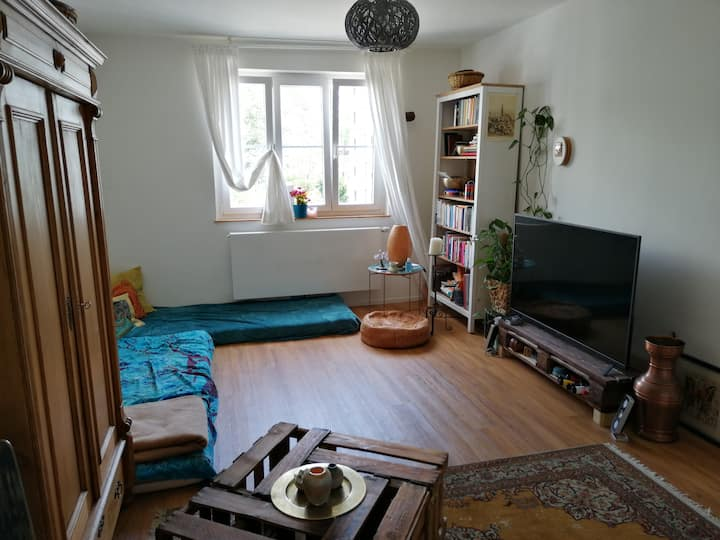 Your cozy & colorful stay in Freiburg