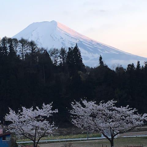 Room Urashima - Peace&One Ryokan in the mountain