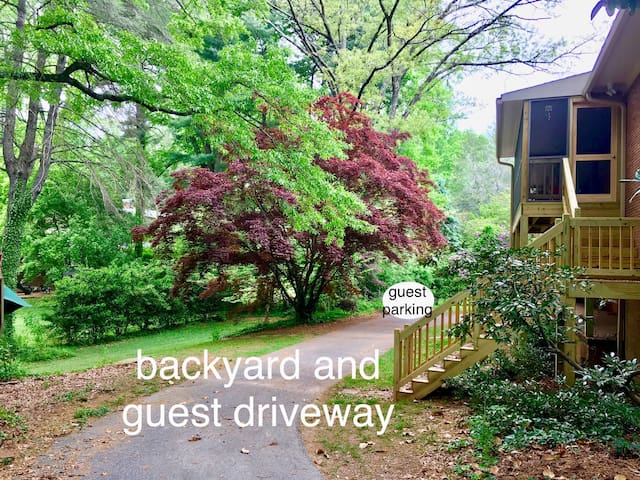 Private driveway to downstairs unit, off-street parking pictured to the right of the large maple.