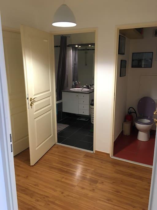 Chambre au calme en centre ville appartements louer for Chambre calme en anglais