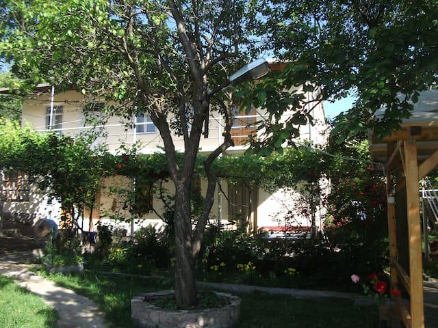 Дом с прекрасным видом в г. Aspindza, комната N2