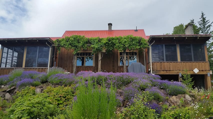Lavender House - off-grid luxury near Salmon Arm - Salmon Arm - House