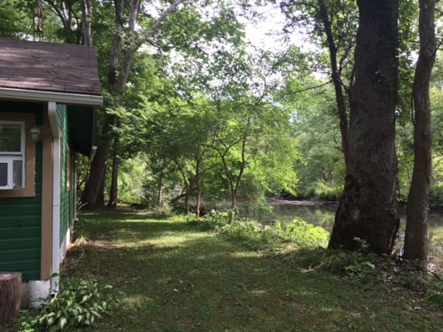 The back yard and the Little Miami River.