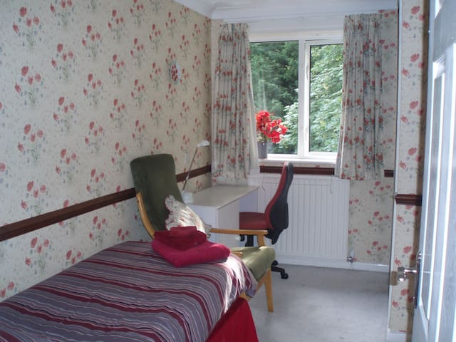 Single room in large family house