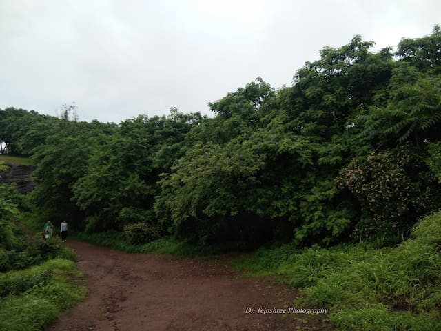 Take a stroll at the Baner hill trail located few meters away