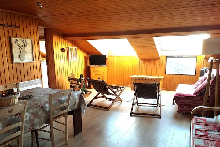 Appartement style chalet, centre de Villard