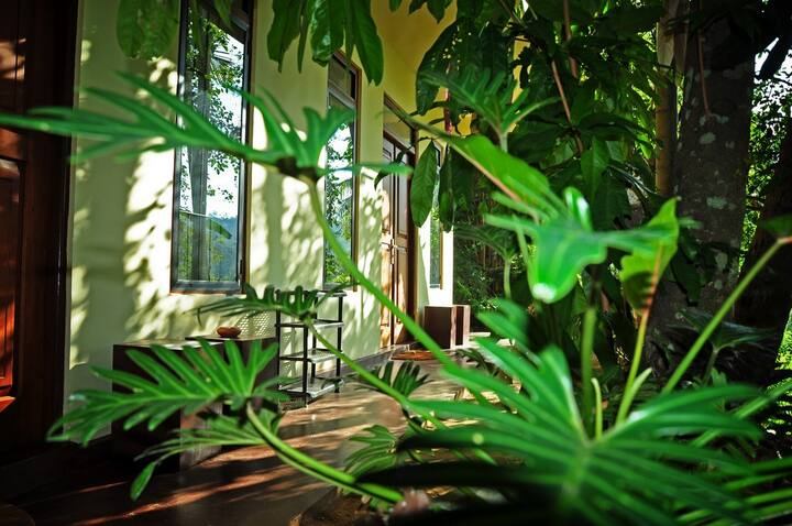 Green view home stay and spa Deluxe Room