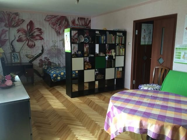 Комната с видом на Неву, можно с детьми