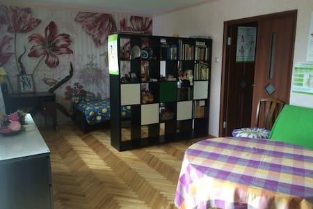 Комната с видом на Неву, можно с детьми - Saint Petersburg - Apartemen