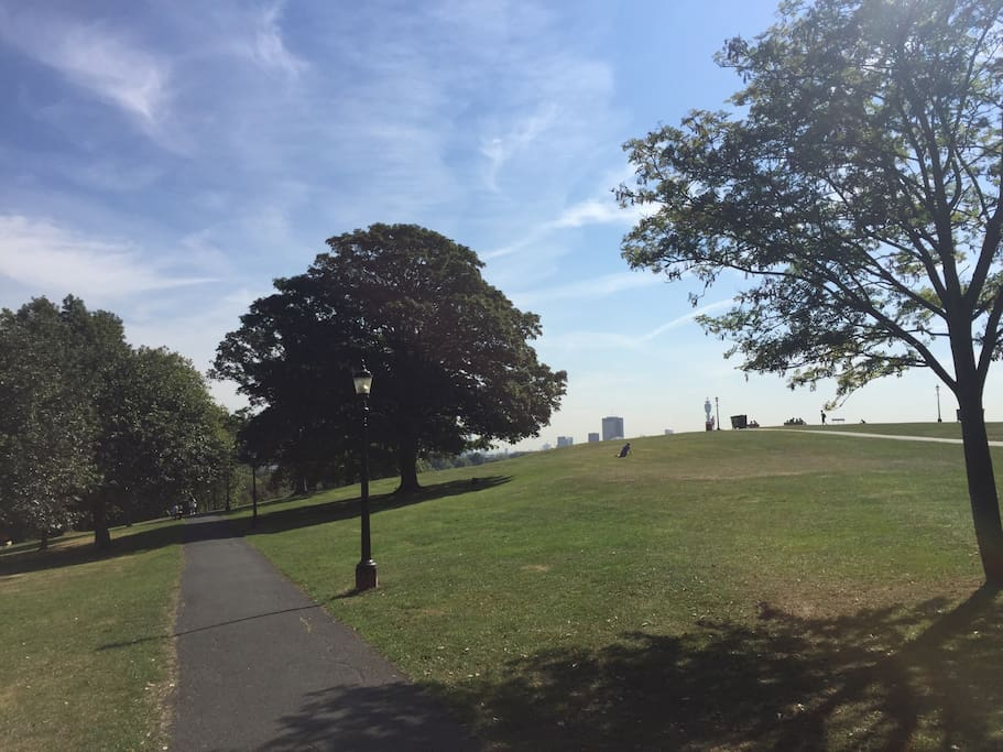 The beauty of Primrose hill park which is only 200 meters away