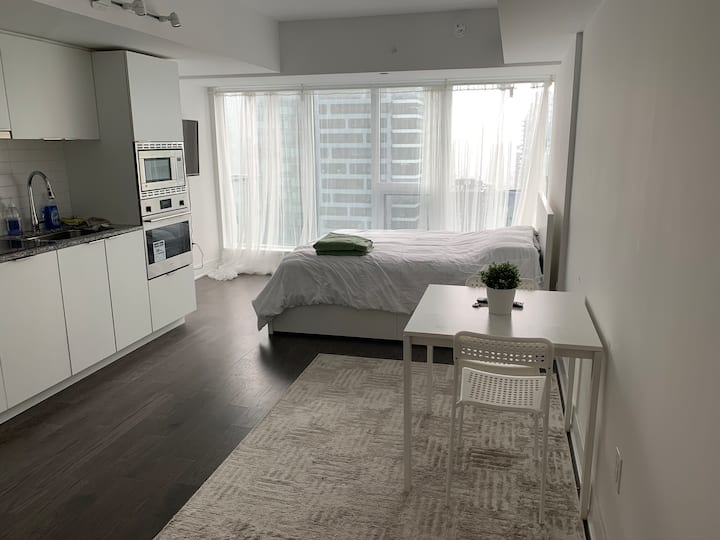 Private Condo studio Suite Downtown Toronto