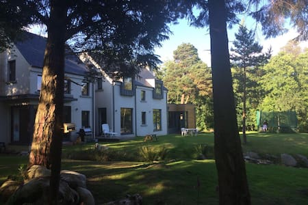 Secluded woodland hideaway in Annamoe - Laragh