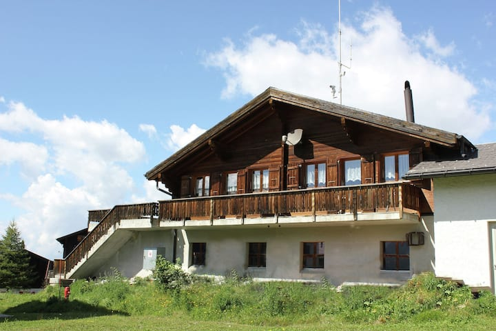 This chalet is in an attractive position in the car-free village of Rosswald.