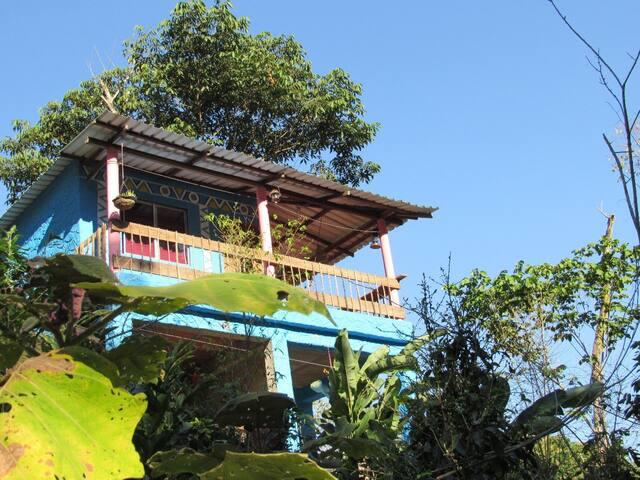 Villa Verde, ecological farm, in the rainforest