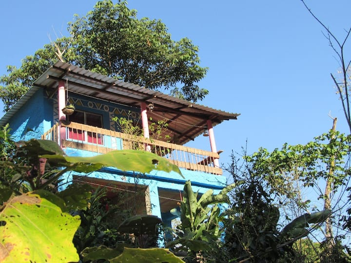 Villa Verde, ecological farm, in the rainforest