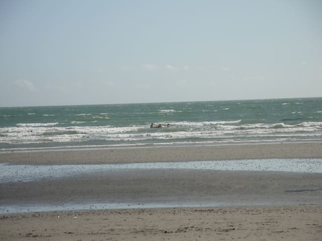 Cosy, family-friendly, by seaside. - West Wittering - Flat