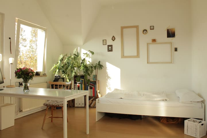 Bright and spacious room wth balcony and roof top!