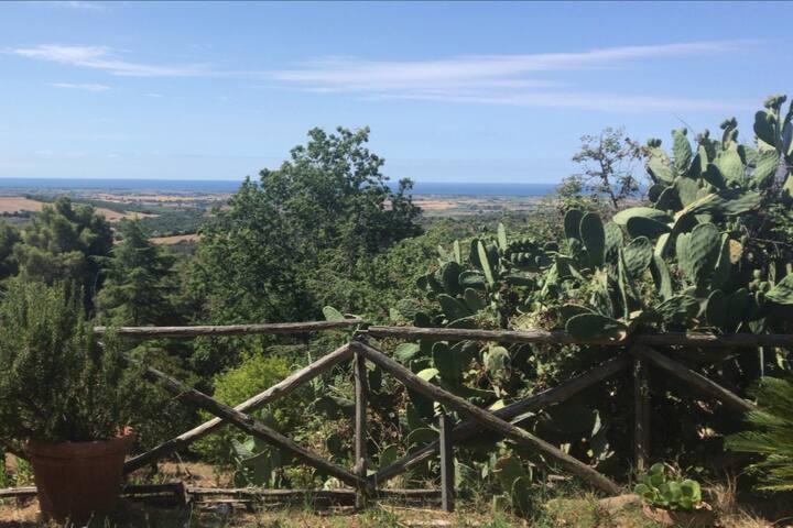 Villa a Capalbio, Toscana immersa nella natura