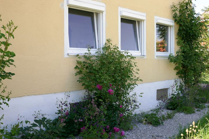 Schönes, helles Appartement  in Traunstein