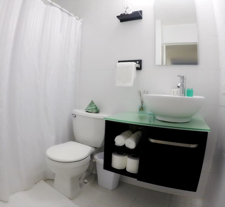 Fully equipped bathroom