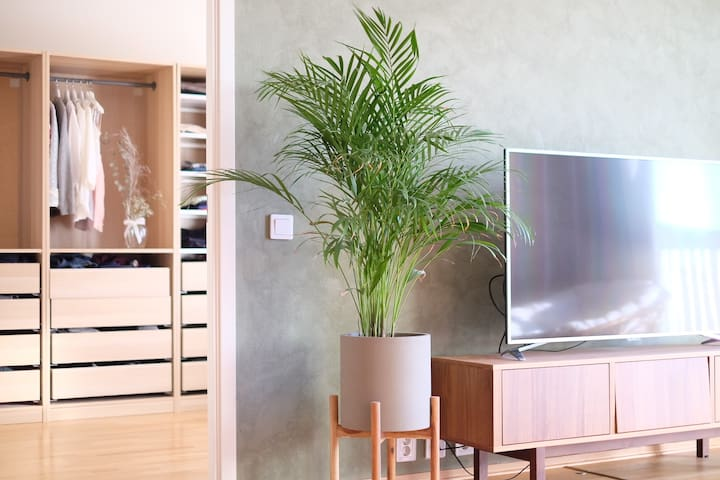 Spaceous Apartment on Shopping Mall SIRKUS