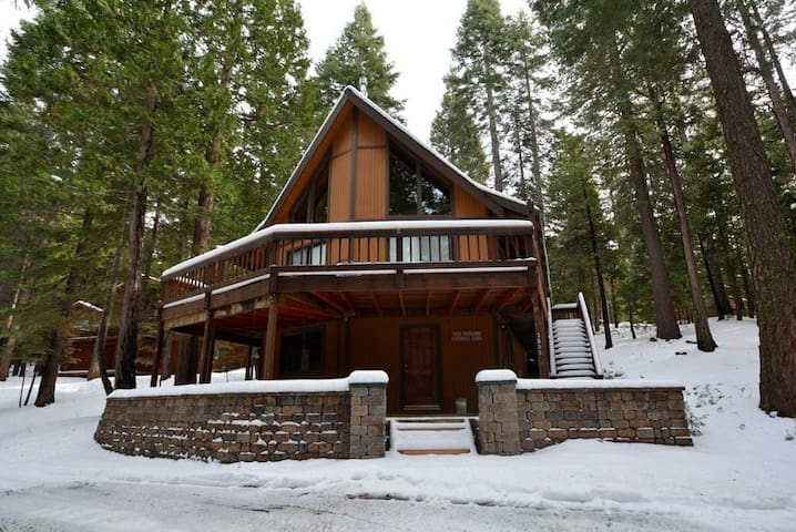Pet-Friendly Chalet in Big Trees Village