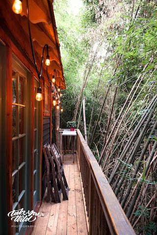 Lindsay Appel's shot of our wrap around treehouse deck