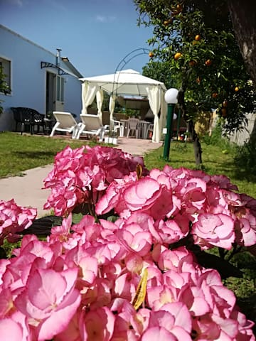 Sardegna- Tortolì-La Petite Maison
