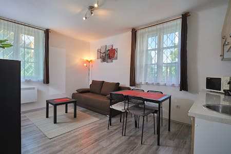 Apartment next to the City park and Thermal Bath