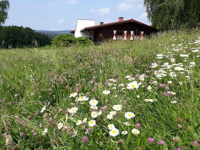 """Ellernhof im Spessart Haus """"Paradies"""""""
