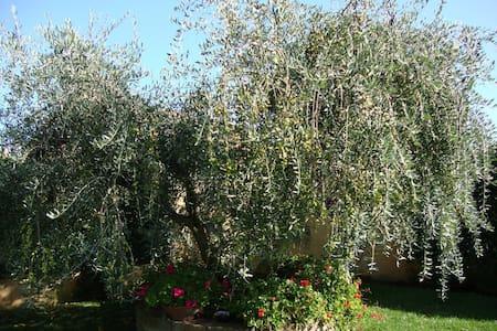 Elegante Villino con Giardino - Località Torre di Maremma - Huvila