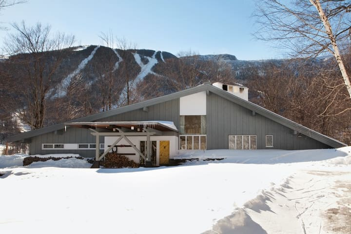 Dreamy mid-century ski lodge - perfect for groups!