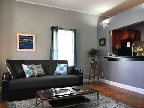 Apartment 1BR mins from JFK/UMASS on Red Line