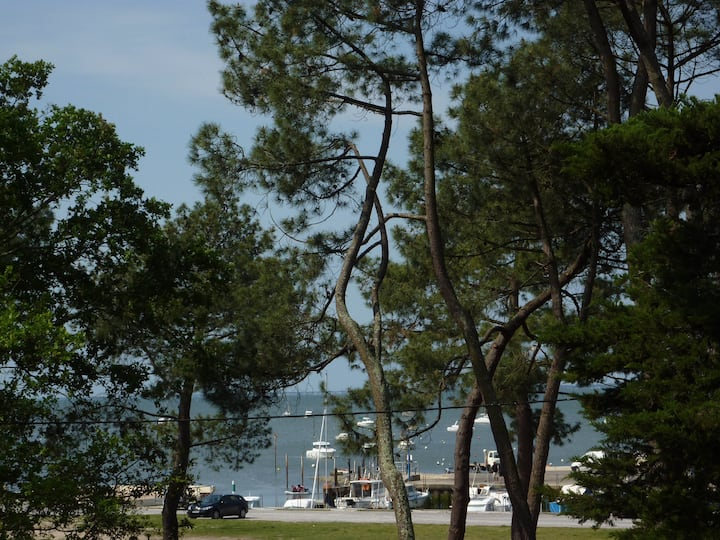 2 bedroom apartment Bassin d'Arcachon seafront, Betey beach